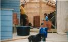 Saunan rakennustalkoot v.1999_3