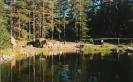 Telttasaunassa 1996_1